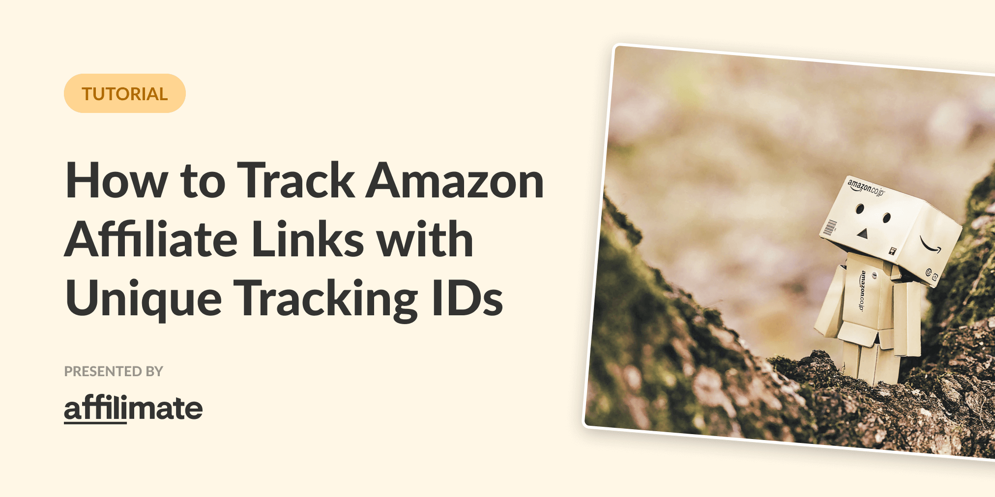 How to Track Amazon Affiliate Links with Unique Tracking IDs